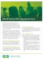 Whole school approach RSE audit tool
