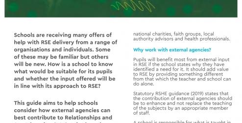 External agencies and RSE